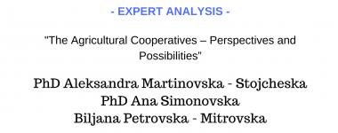 Expert analysis Martinovska-Stojcheska, Simonovska and Petrovska
