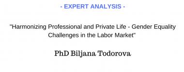 Expert analysis Biljana Todorova