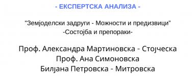 Експертска анализа Мартиновска, Симоновска и Петровска